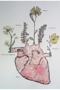 Symbiosis: The Heart 